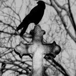 Père Lachaise, Cimetière, Cemetery, Animaux, Art Funéraire, Cimetière du Père Lachaise, Corbeaux, France, Friedhof, Hatuey Photographies, Lachaise, Oiseaux, Paris, cimitero, graveyard,Crows