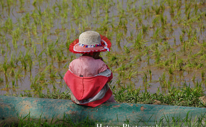 "Myanmar Birmanie, Photographies Myanmar Birmanie Travel in Birmania Myanmar, Nyaung Shwe blog by ""© Hatuey Photographies"""